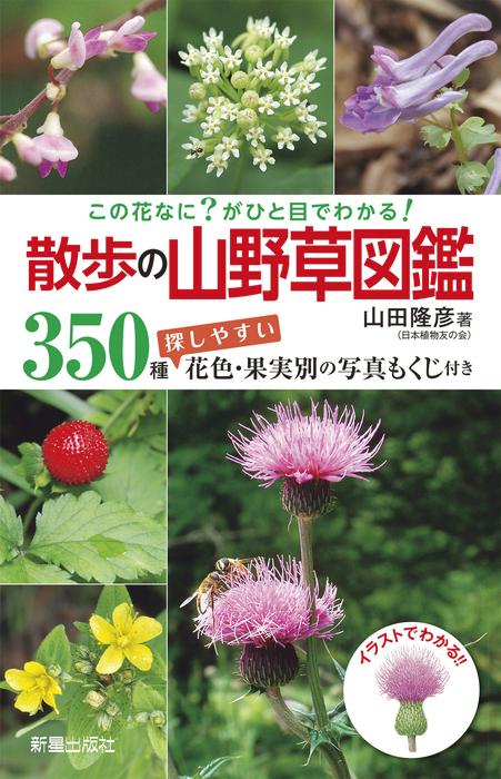 この花なに?がひと目でわかる! 散歩の山野草図鑑-電子書籍-拡大画像