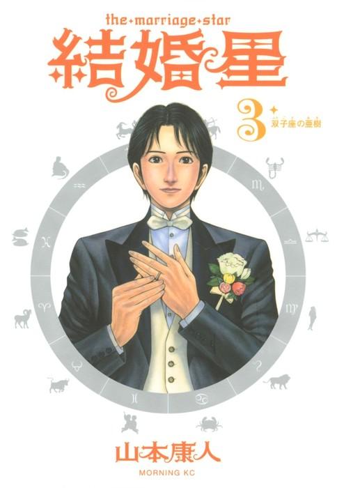 結婚星(3)-電子書籍-拡大画像