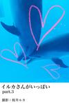 イルカさんがいっぱいpart.3-電子書籍