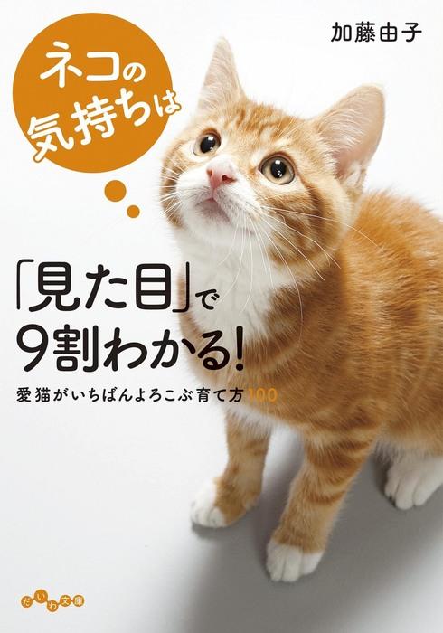 ネコの気持ちは「見た目」で9割わかる!拡大写真