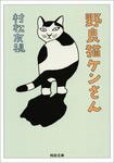 野良猫ケンさん-電子書籍
