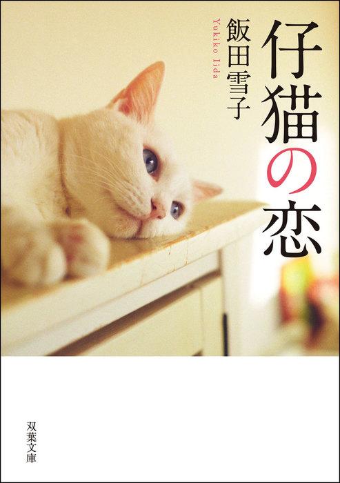 仔猫の恋拡大写真
