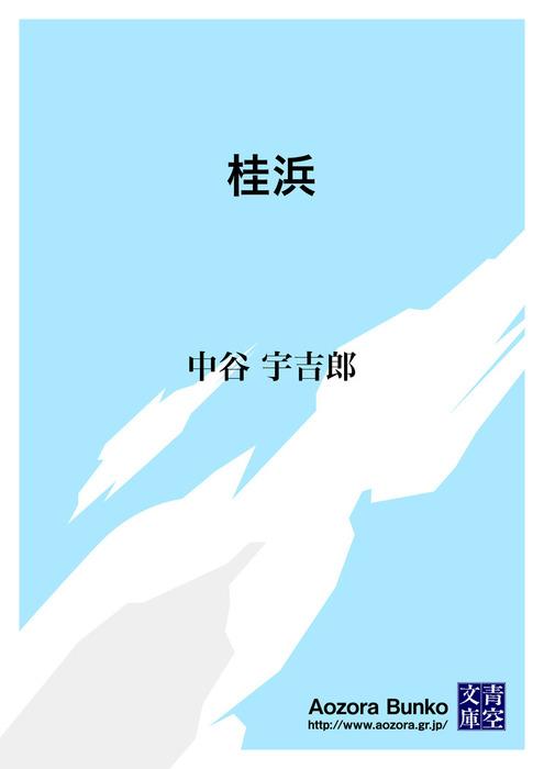 桂浜拡大写真