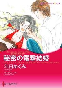 秘密の電撃結婚-電子書籍