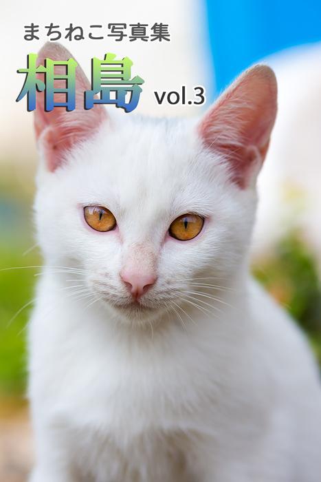 まちねこ写真集・相島 vol.3拡大写真