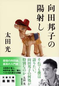 向田邦子の陽射し-電子書籍