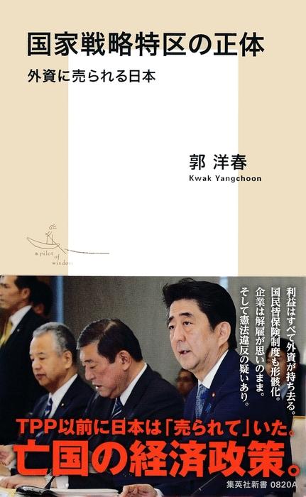 国家戦略特区の正体 外資に売られる日本拡大写真