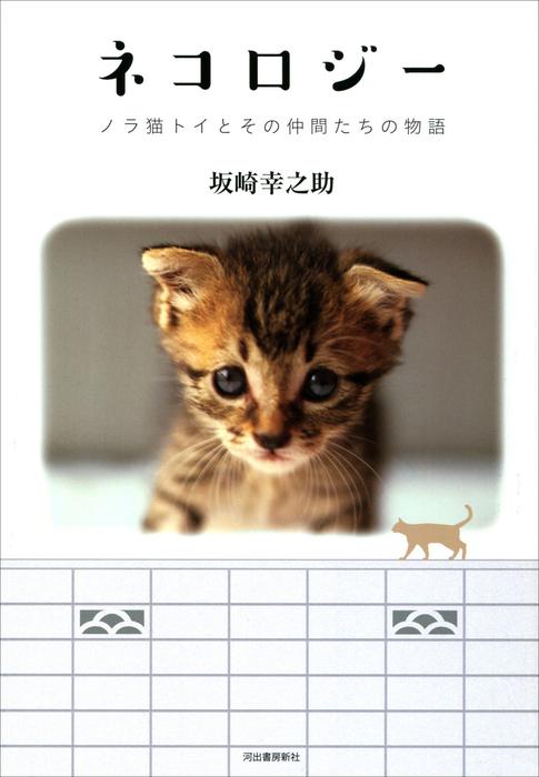 ネコロジー ノラ猫トイとその仲間たちの物語拡大写真