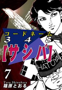 コードネーム348【サシバ】(7)-電子書籍