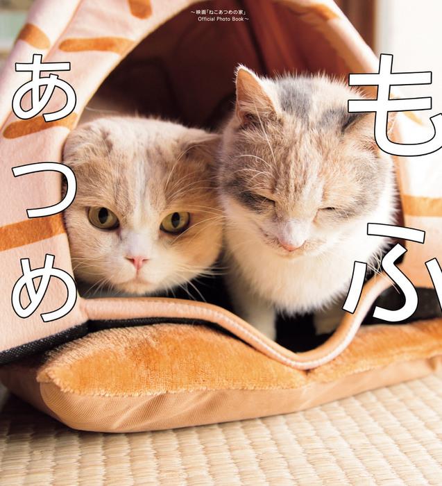 もふあつめ ~映画「ねこあつめの家」Official Photo Book~-電子書籍-拡大画像