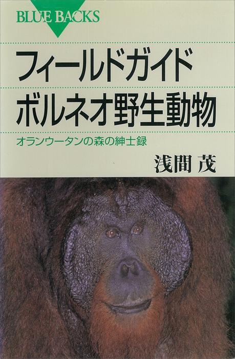 フィールドガイド ボルネオ野生動物 オランウータンの森の紳士録拡大写真