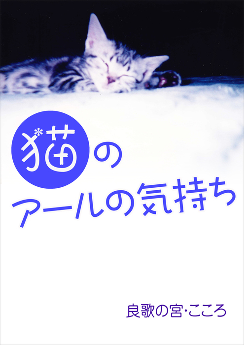 猫のアールの気持ち拡大写真