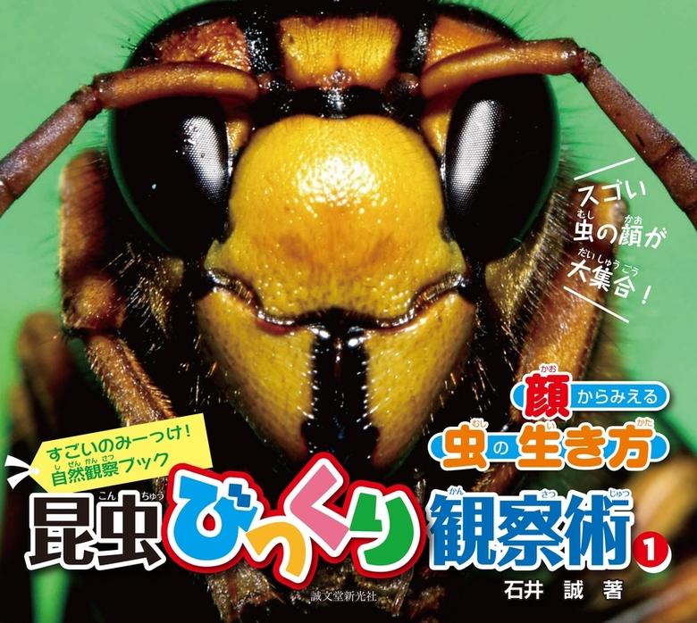 昆虫びっくり観察術〈1〉顔からみえる虫の生き方拡大写真