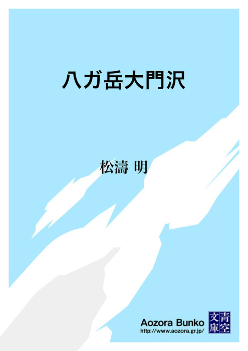 八ガ岳大門沢拡大写真