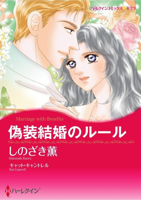 偽装結婚のルール拡大写真