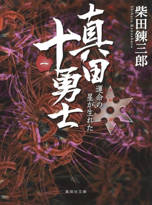 真田十勇士(一) 運命の星が生れた拡大写真