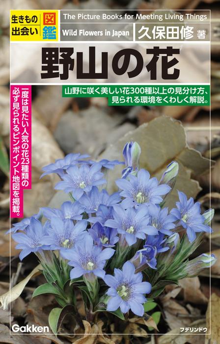 野山の花-電子書籍-拡大画像