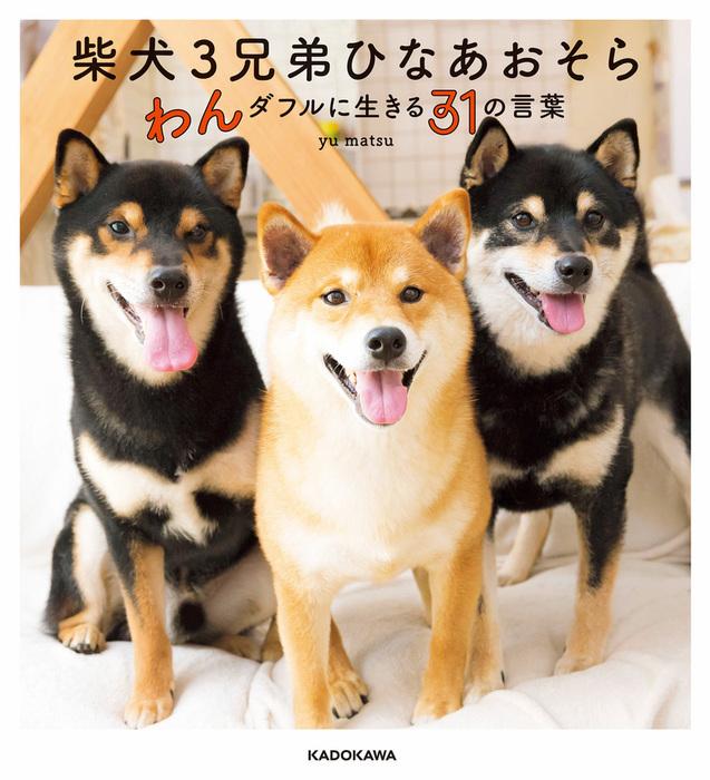 柴犬3兄弟 ひなあおそら わんダフルに生きる31の言葉-電子書籍-拡大画像
