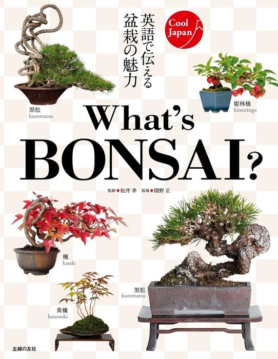 What's BONSAI ?-電子書籍-拡大画像