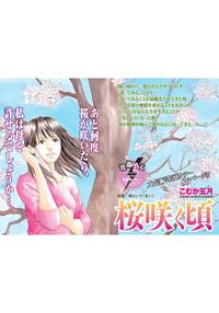 母という「女」~桜咲く頃~-電子書籍