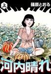 河内晴れ (上)-電子書籍