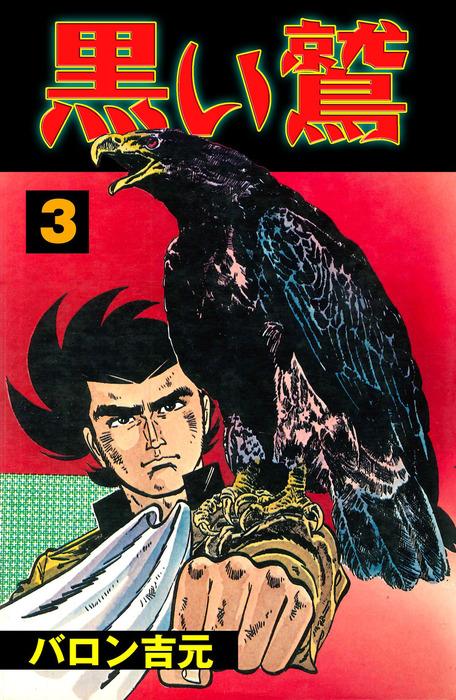 黒い鷲 3拡大写真