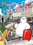 フランスはとにっき 街には慣れたけどカタコトのまま半年目-電子書籍
