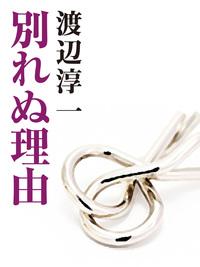 別れぬ理由-電子書籍