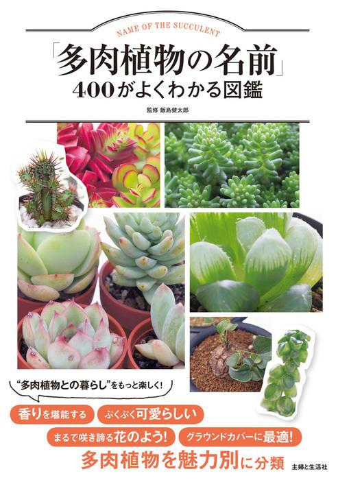 「多肉植物の名前」400がよくわかる図鑑拡大写真