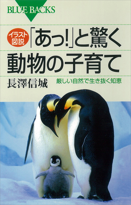 イラスト図説 「あっ!」と驚く動物の子育て 厳しい自然で生き抜く知恵拡大写真