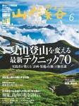 山と溪谷 2017年6月号 [雑誌]