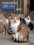 まちねこ写真集・藍島 vol.1-電子書籍