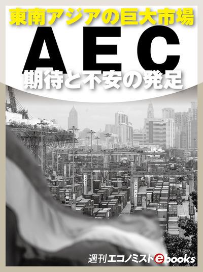 AEC 期待と不安の発足-電子書籍