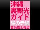 沖縄裏観光ガイド 昼の赤線 真栄原と桜坂-電子書籍