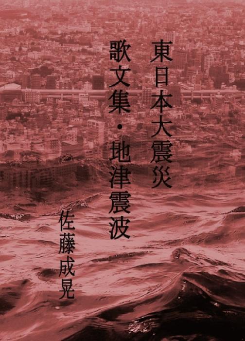 東日本大震災 地 津 震 波拡大写真