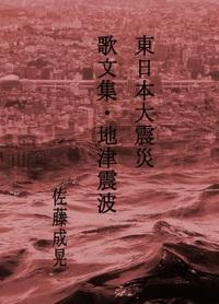 東日本大震災 地 津 震 波-電子書籍