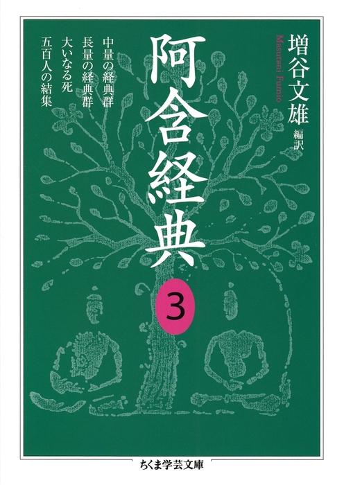 阿含経典3-電子書籍-拡大画像