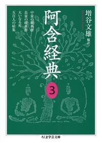 阿含経典3