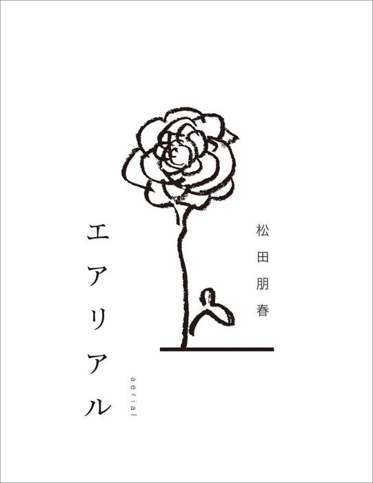 エアリアル-電子書籍-拡大画像