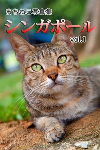 まちねこ写真集・シンガポール vol.1