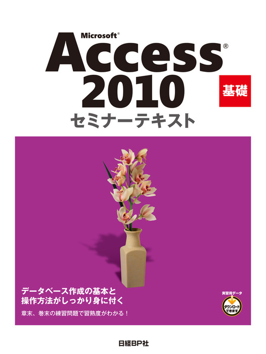 Microsoft Access 2010 基礎 セミナーテキスト拡大写真