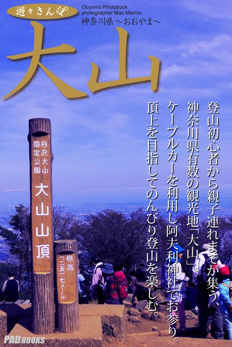 遊々さんぽ 「大山」拡大写真