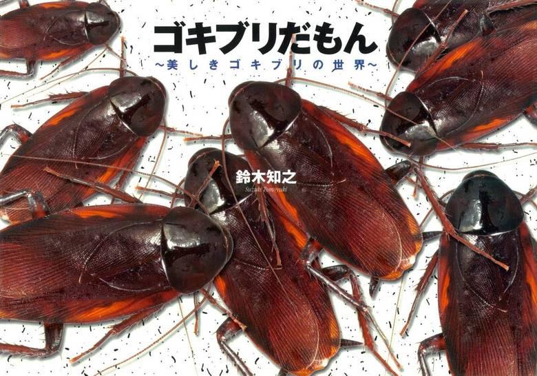 ゴキブリだもん~美しきゴキブリの世界~拡大写真