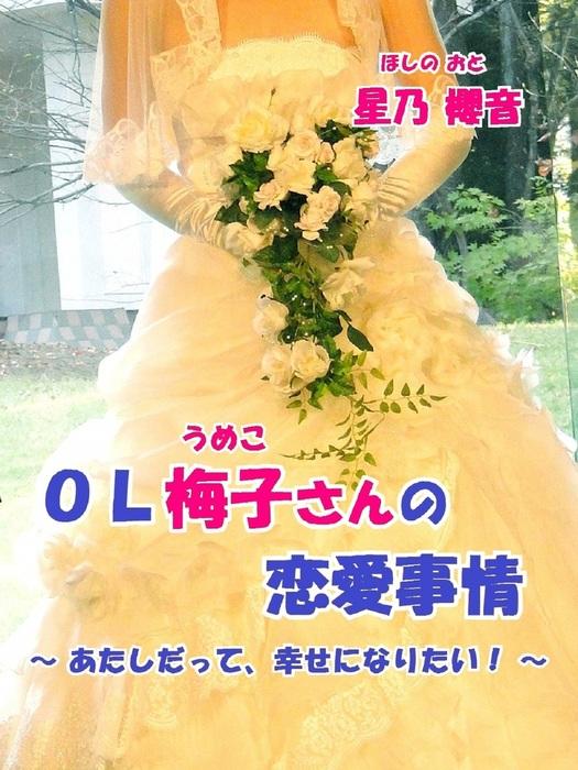 OL梅子の恋愛事情~あたしだって、幸せになりたい!~拡大写真