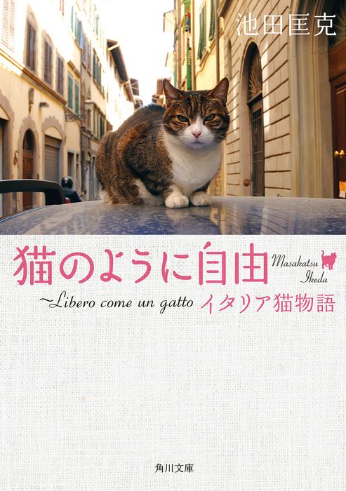 猫のように自由 ~Libero come un gatto イタリア猫物語拡大写真