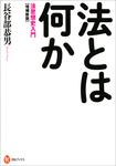 増補新版 法とは何か 法思想史入門-電子書籍