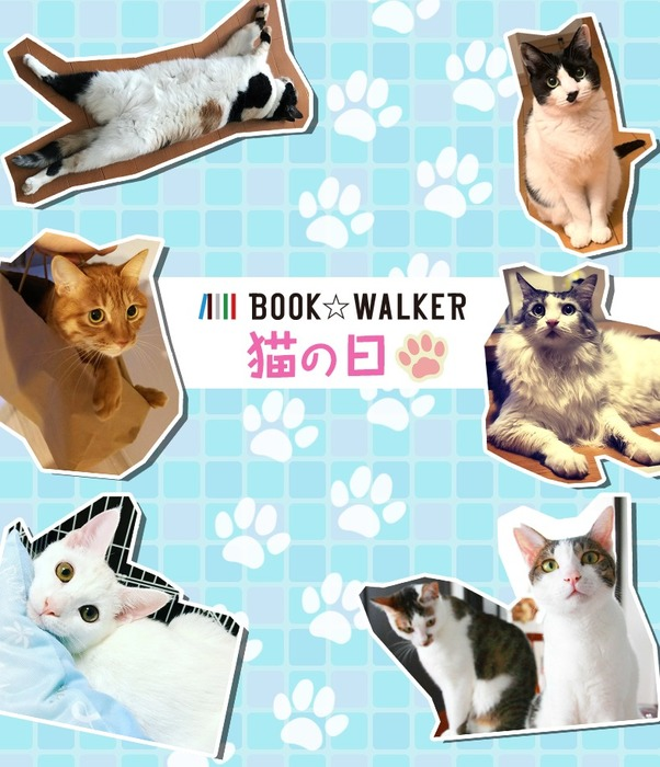 2月22日は『猫の日』だにゃー!きせかえ本棚02拡大写真