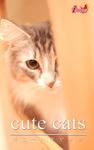 cute cats17 ノルウェージャンフォレストキャット-電子書籍