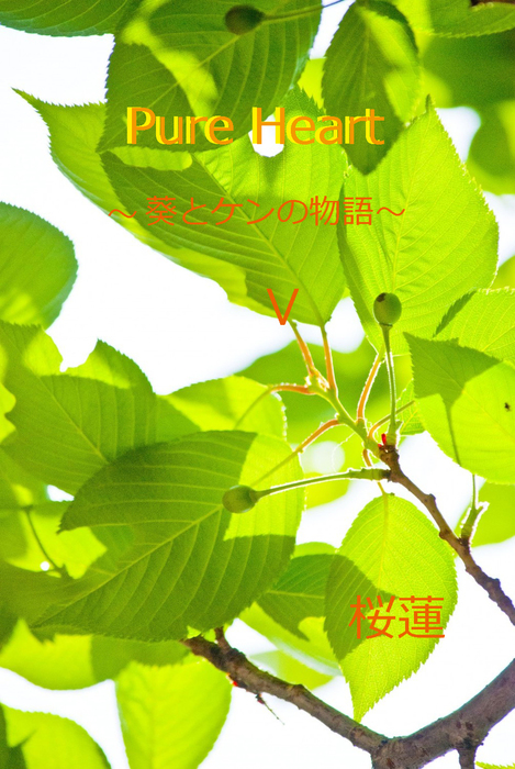 Pure Heart~葵とケンの物語~5拡大写真