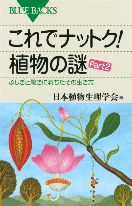 これでナットク! 植物の謎 Part2 ふしぎと驚きに満ちたその生き方拡大写真
